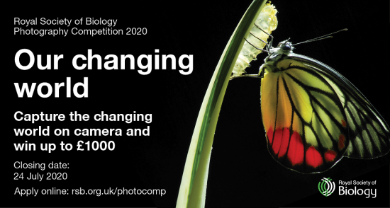 RSB Photography Competition 2020 social media card