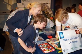 Stem cell Lego at Cheltenham science festival
