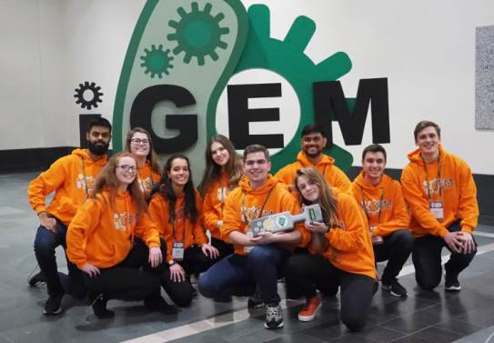 IGEM group TI