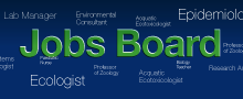 Jobs board icon